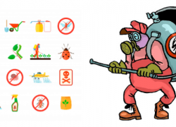 Types of Insecticides/Pesticides – You Have To Know Before Taking Action